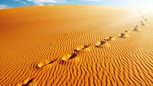 orme-nel-deserto2